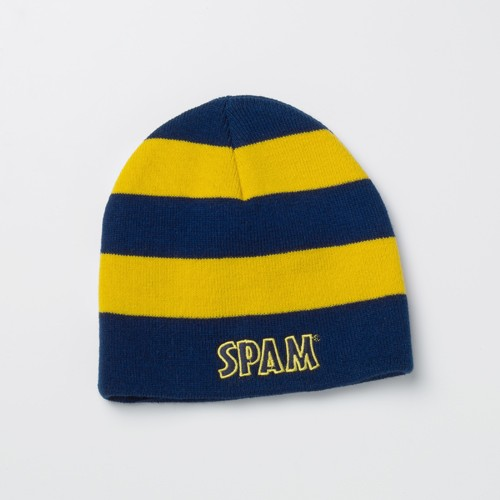 Striped SPAM® Brand Beanie