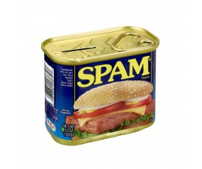 SPAM® Classic Can Bank